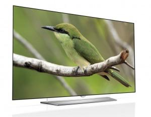 EF950V_H_green bird